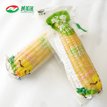 Non-GMO Fresh White Corn