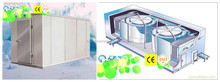 Vegetable/meat/fruits Cold storage room equipment and quick freeze machine