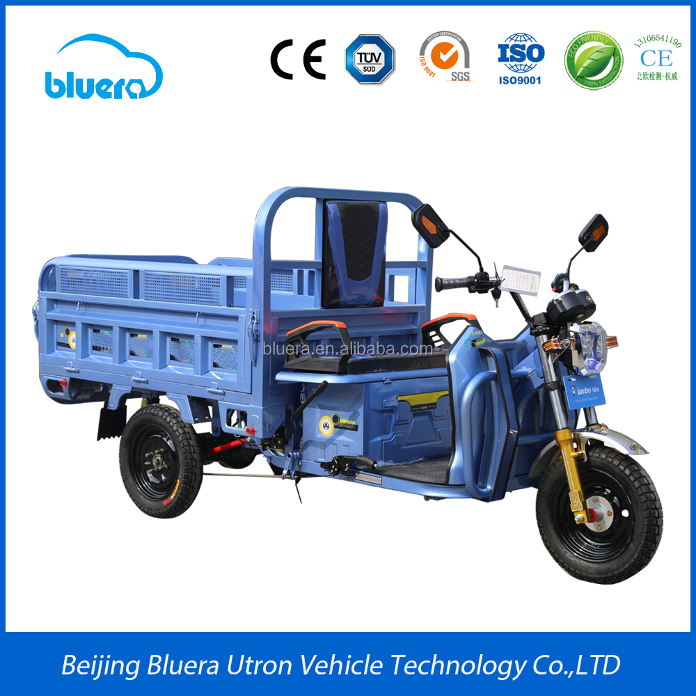Bluerebike Camel T1 800~1000W Motor 48V-60V - 20AH-100AH adult 3 wheel electric motorcycle