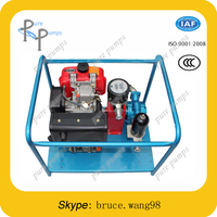 diesel engine drive SS304 gear oil pump