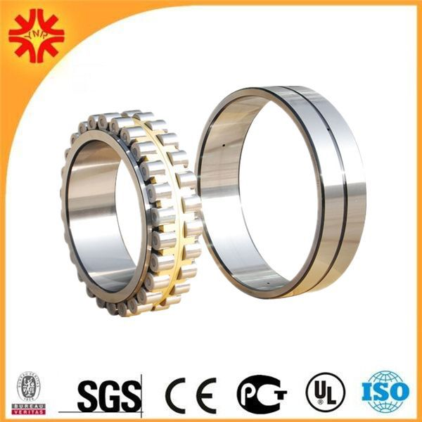 China bearing full complement cylindrical roller bearing SL04 5006 PP