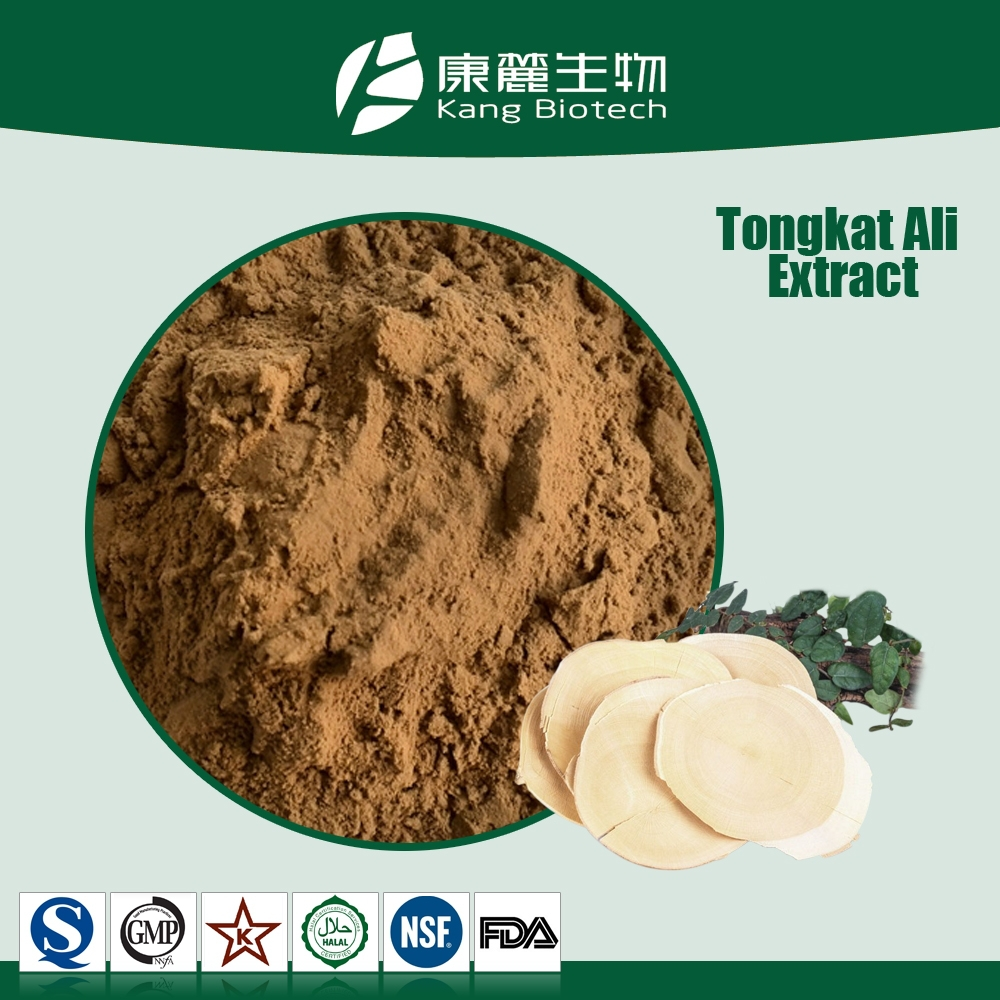 Natural testosteron booster tongkat ali root extract 50:1 100:1 200:1