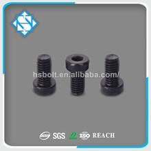 Black Finish Stainless Steel DIN 6912 Hexagon Socket Thin Head Cap Screw with Pilot Recess