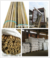 Raw Bamboo Poles Dry Canes CHEAP