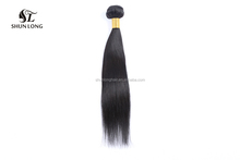 Shunlong Factory Supply 100% Real Unprocessed Brazilian Hair in China