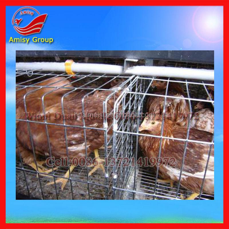Chicken farm slots