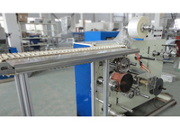 Plastic Spoon Packing Machine (Single pcs in bag)