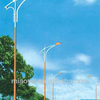 Galvanized Steel Street Lamp Post Light