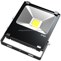 Aluminum Housing IP65 LED Flood Lamp High Power LED 10W LED Flood Lighting