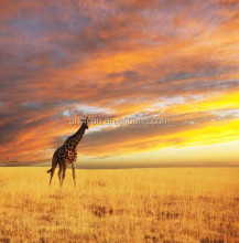 wild animal oil painting in the sunset scenery
