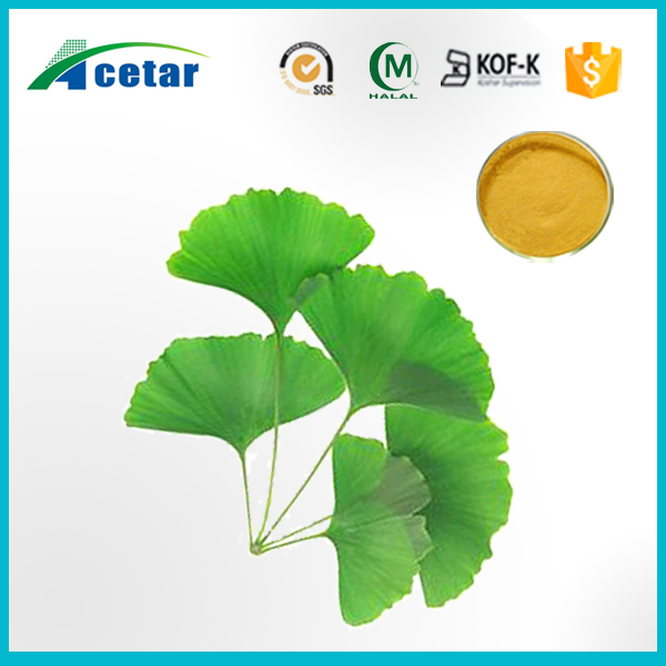 ISO& kosher factory supply ginkgo biloba leaf extract Ginkgo Flavones Glycoside 24.0%