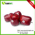 fresh red delicious apples for sale