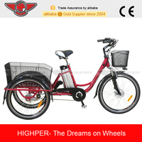 250W Full Alloy Frame Electric Tricycle