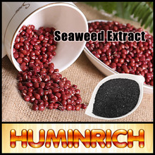 """HuminRich"" Shenyang Sargassum Source Organic Pure Dried Seaweed Fertilizer"