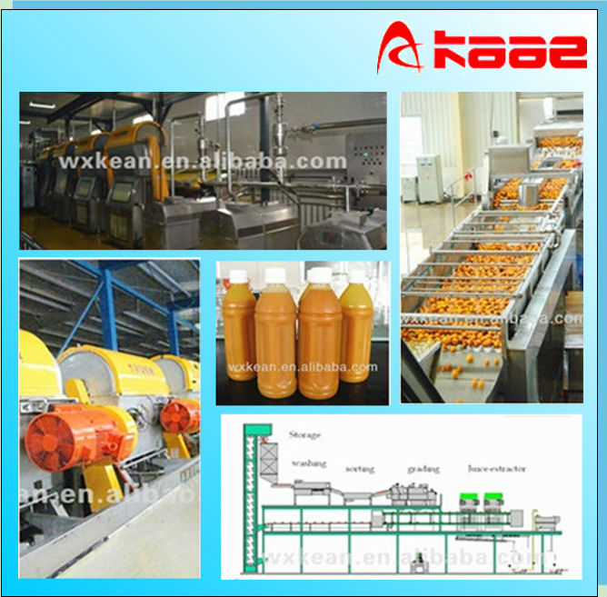 Turnkey project industrial orange juice making plant