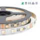 Multicolor 4 in1 12mm rainbow 24v rgbw led strip light