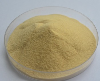 100% Natural Huperzia Serrata Extract 1% Huperzine-A, CAS NO.: 102518-79-6
