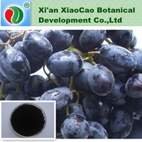 Black Currant Extract,Black Currant Powder,Black Currant P.E With 5%, 15%, 25% Anthocyanins UV/ HPLC