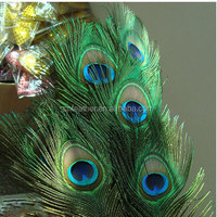 Natural color high quality and cheap Peacock Tail Feathers