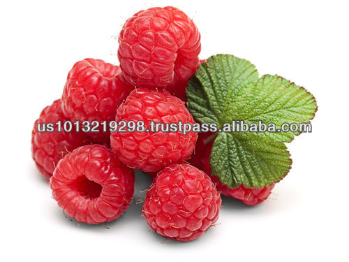 GMP Diet Pills with Nature Made Raspberry Ketone
