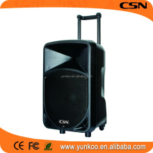 supply all kinds of guangdong loudspeaker box,2 way speaker crossover,speaker wristband