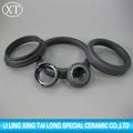 China silicon carbide rings used in magnetic force driving pump