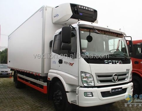 Hot-sale 4*2 Foton 12 ton reefer van truck, reefer vehicle