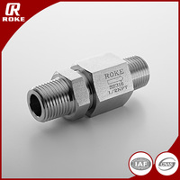 "China Manufacturer 1/2""NPT High Quality Male Swing Check Valve"