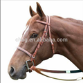 English Pvc Horse Bridle And Rein With Cavesson Noseband