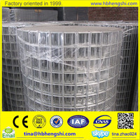 All normal sizes galvanized welded wire mesh