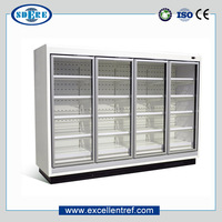 DDW1520F1 Double Glass Door Commercial Freezer Vertical Showcase Used In Supermarket