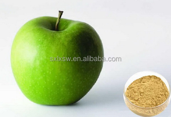 Export high quality advanced whitening product apple extract powder