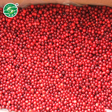 IQF frozen Lingonberry/cowberry with good quality and hot price