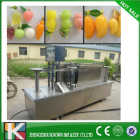 soft tube fill machine Popsicle or ice pop/ice lolly fill seal machine