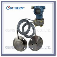 Double stainless steel flange DP level pressure transmitter