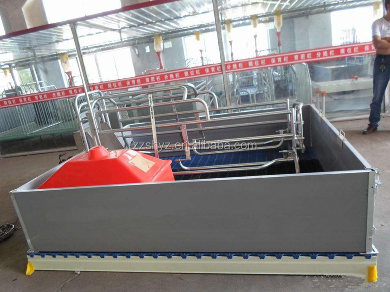 PVC Stall Farrowing Used For Pigs With Stainless Steel Pipe