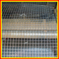 China factory high quality stainless steel Barbecue crimped wire mesh/BBQ MESH/vibrating mesh
