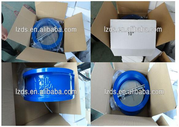 DN600 Wafer Type Double Disc Swing Check Valve PN16 Low Price