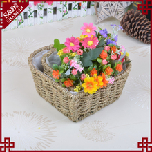 Decoration shallow mouth design straw woven heart shaped flower pot