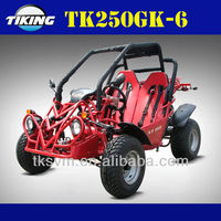 TK250GK-6 250cc Go Kart BUGGY off road go karts for sale