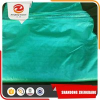 clear green PE Tarpaulin sheet woven fabric
