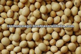 Soybean Specification