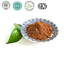 High quality brown raw cacao powder
