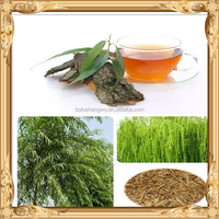 white willow bark salicin/top quality white willow bark extract/salicin white willow bark