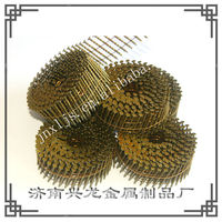 Galvanized Copper Coil Roofing Nails Factory