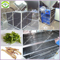 solar energy stainless steel onion drying machine