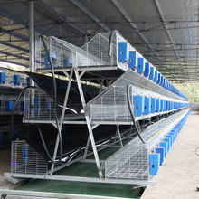 Shandong Province sale commercial and breeding rabbit farm cages