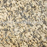 Tigre jaune granite tile