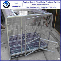 Single Door Wire Dog Crates/Cheap wire dog cage