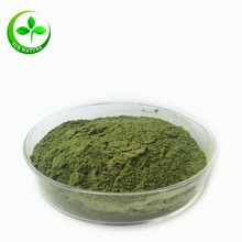 2016 best wheatgrass powder/organic wheat grass powder/wheat grass juice powder